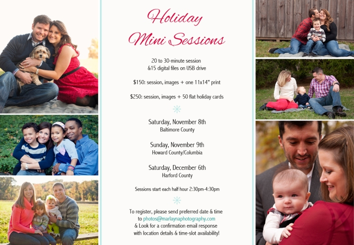 2014 Holiday Mini sessions-v3